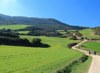 Camino Walk 2017